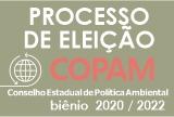 Eleição Copam